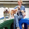 Up to 62% Off Doggy Daycare at Canine Retreat