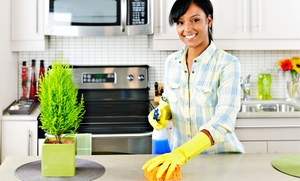 HomeBlis: Regular or Aromatherapy Housecleaning Services or a Home-Organization Service from HomeBlis (Up to 64% Off)