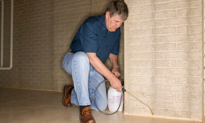 Rebel Eco Pest Control - Salt Lake City: $49 for an Interior and Exterior Pest-Control Package from Rebel Eco Pest Control ($250 Value)