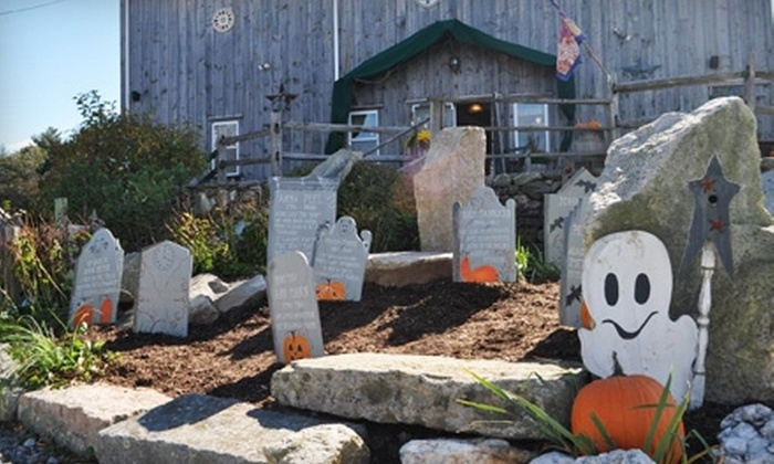 Silverbrook Farm - Acushnet: Visit for Two, Four, or Six to the Harvest Festival at Silverbrook Farm (Up to 60% Off)