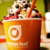Half Off Vouchers for Frozen Yogurt at Orange Leaf Frozen Yogurt