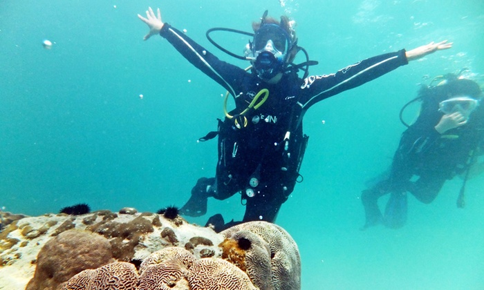 Deep Blue Sea Diving FZCO - Dubai: Two-Hour Scuba Dive with Full-Face Mask at Deep Blue Sea Diving (Up to 70% Off)