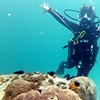Scuba Dive with Full-Face Mask