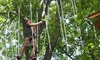 42% Off Climbing and Zip Lining