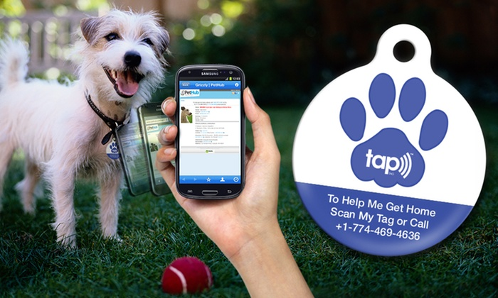 PetHub Wireless Tags with GPS & Lost-Pet Services: Lost-Pet Service Subscription with Optional Lost-Pet Medical Insurance from PetHub (Up to 58% Off). Free Shipping.