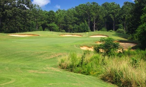 Meadow Links Golf Club at George T. Bagby: 18-Hole Round of Golf for Two at Meadow Links Golf Club at George T. Bagby (Up to 58% Off). Two Options.