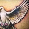 65% Off Tattoo Work in Deerfield Beach