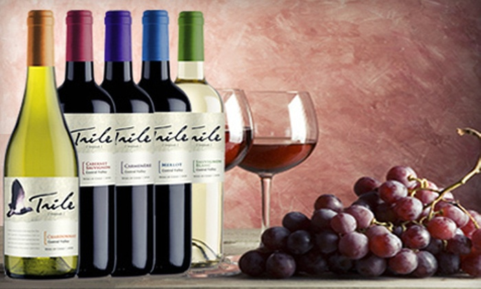 Wine Passionate: $49 for Five Bottles of Chilean Wine from Wine Passionate ($175 Value)
