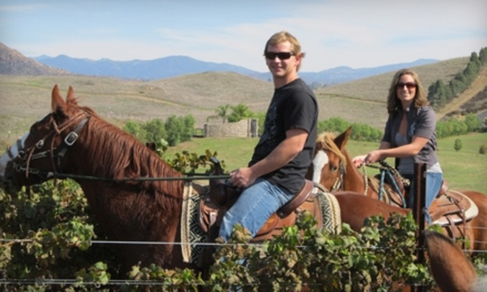 Wine Country Trails by Horseback - Temecula: $150 for Couples' Wine Tasting, Lunch, and Horseback Riding from Wine Country Trails by Horseback in Temecula ($300 Value)