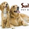 Suite Paws Pet Resort & Spa - Southeast Raleigh: $19 for $46 Worth of Pet Boarding Services at Suite Paws Pet Resort & Spa