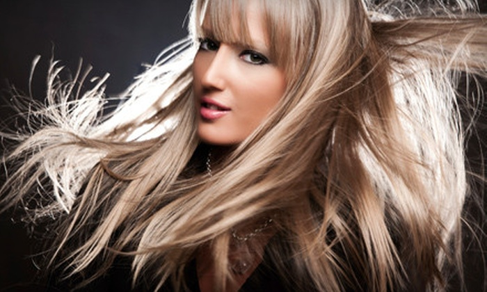 Salon 209 - Ocala: Shampoo, Haircut, and Style Packages at Salon 209 (Up to 57% Off). Three Options Available.