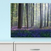 "Nature Photography on 26""x18"" or 40""x26"" Gallery-Wrapped-Canvas Prints"