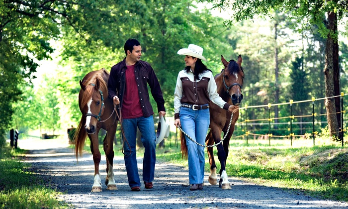 Douglas Lakeview Stables - 7: Hayride for Four or Eight People, or a Horseback Wedding Package  at Douglas Lakeview Stables (Up to 80%