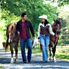 Up to 80% Off Hayride or Wedding Package