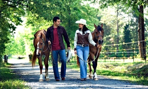 Douglas Lakeview Stables: One Horseback Trail Ride for Two or Four at Douglas Lakeview Stables (Up to 53% Off)