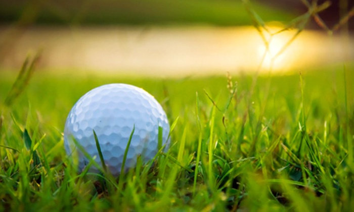 Wisconsin Classic Golf Tour: Half Off a Wisconsin Golf Tour Pass from Wisconsin Classic Golf Tour, Valid for Discounts at 6 Courses ($40 Value)