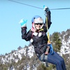 Two-Hour Forest Segway Tour or Three-Hour Zipline Adventure