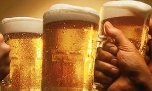 V6 Pub And Grill: Degustazione birre con tagliere e mix di fritti a Como (sconto fino a 62%)
