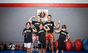 Pu'u Muay Thai: $49 for $149 Groupon — Pu'u Muay Thai