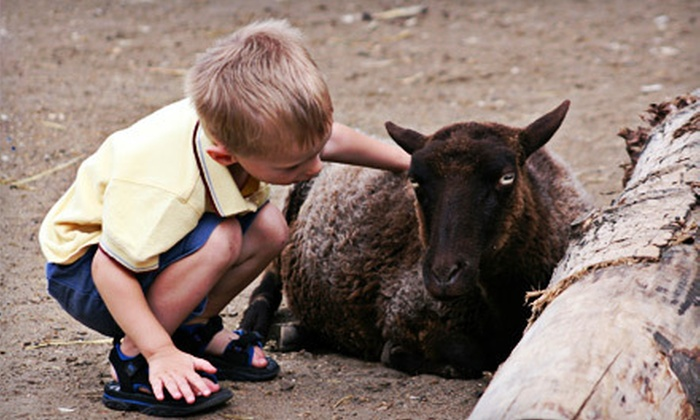 Maplewood Farm - Maplewood: $10 for a Family Outing for Up to Two Adults and Two Children to Maplewood Farm in North Vancouver (Up to $20.53 Value)