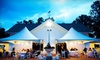 In Tents Events - Tallahassee: $49 for $100 Worth of Party and Event Rentals from In Tents Events