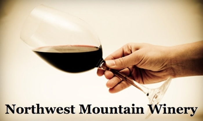 Northwest Mountain Winery - Olympia: $20 for Wine Tasting for Up To 20 Guests at Northwest Mountain Winery