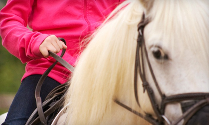 Linden Hill Stables - Kearney: Horseback-Riding Party for 1–10 or 11–25 Kids or Three Riding Lessons at Linden Hill Stables in Kearney (Up to 64% Off)
