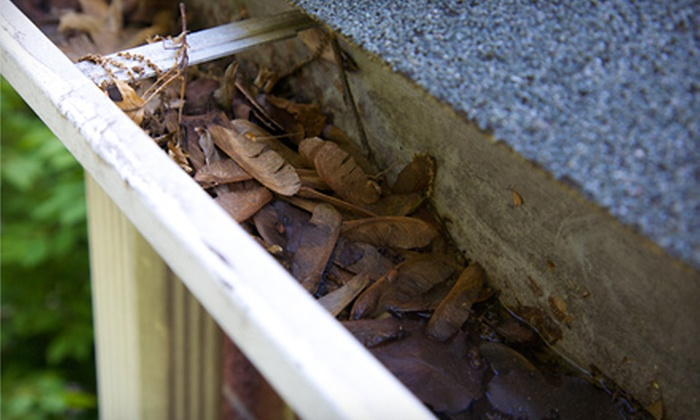 Gutter Brothers - Columbia, MO: $75 for $150 Worth of Gutter Cleaning from Gutter Brothers