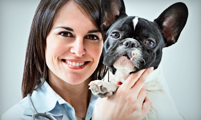 Kindred Spirits Animal Clinic - Southland Executive Park: Two or Three Nights of Pet Boarding at Kindred Spirits Animal Clinic (Up to 62% Off)