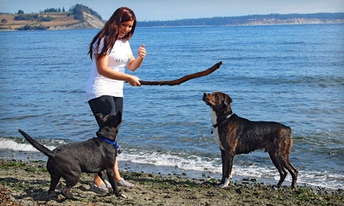 DogTreks - Saanich: $69 for 10 Group Dog Hikes from DogTreks ($200 Value)