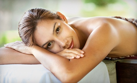 $65 Groupon to The Skin Spa  - The Skin Spa in Boise