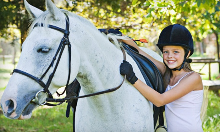 Heggelund Training - Bonsall: One or Two Private Horseback-Riding Lessons at Heggelund Training in Vista (Up to 63% Off)