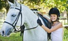 Heggelund Training Stables - Bonsall: One or Two Private Horseback-Riding Lessons at Heggelund Training in Vista (Up to 63% Off)