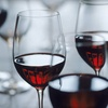 51% Off Wine Tasting for Two in Minden