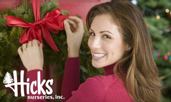 Half Off Holiday Wares At Hicks Nurseries