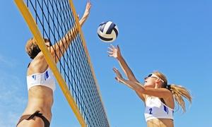 Pala Beach: Affitto di un campo beach volley per 6 o 8 persone da Pala Beach (sconto fino a 69%)