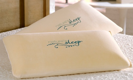 2-Pack of Nature's Sleep Premium Faux Down Pillows