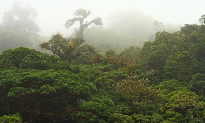 Travelocity Car Rental Costa Rica