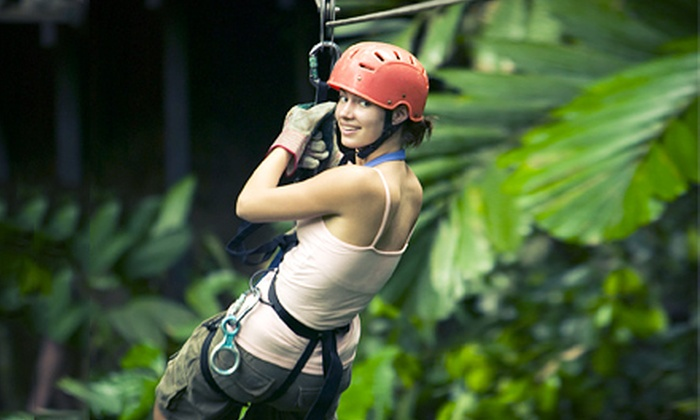 Wildman Adventure Resort - Niagara: 1.5-Hour Ziplining Tour for One, Two, or Four from Wildman Adventure Resort (Up to 58% Off)