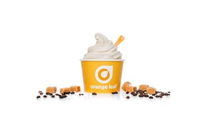 Orange Leaf: $6 For One or $18 for Three $10 Groupons for Frozen Yogurt at Orange Leaf (40% Off)