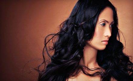 45-Minute Haircut-and-Conditioning Package, Including a Haircut and Deep-Conditioning Treatment - The Hair Co. in Grand Rapids