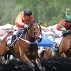 Atlanta Steeplechase – Up to 64% Off Admissions