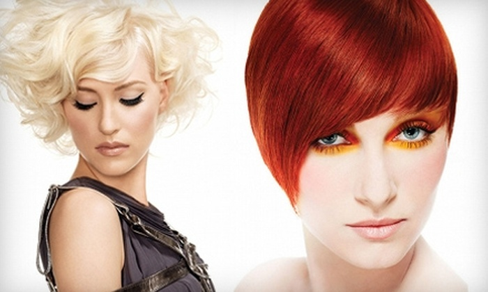 Victoria Salon - Oak Park: $50 for $100 Worth of Hair, Nail, and Waxing Services at Victoria Salon in Oak Park