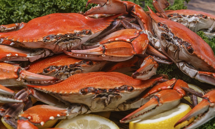 Maryland Seafood Festival - Cape St. Claire: Maryland Seafood Festival for Two or Four at Sandy Point State Park on September 12 or 13 (Up to 50% Off)
