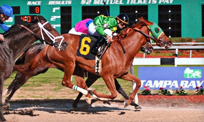 Tampa Bay Downs - Westchase: Horseracing Outing for One, Two, Four, or Six at Tampa Bay Downs (Up to 65% Off)