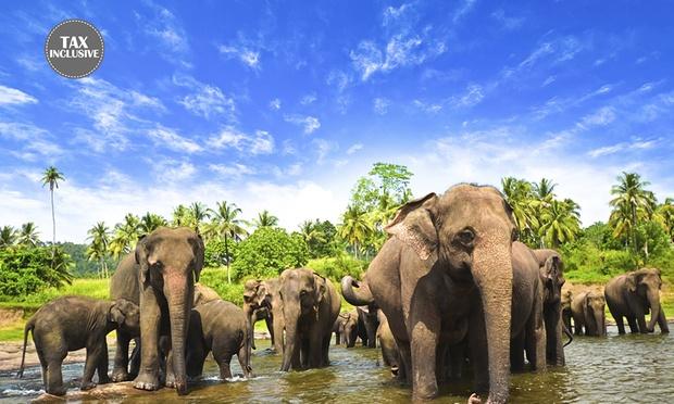 Sri Lanka: Cultural Tour 0