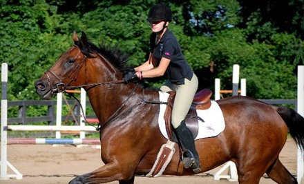 One 60-Minute Horseback Riding Lesson (a $50 value) - Flying Hoofs Stables in Burlington