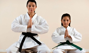Altamont Martial Arts: One or Two Months of Martial-Arts Self-Defense Classes with a Uniform at Altamont Martial Arts (Up to 58% Off)