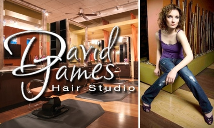 David James Hair Studio - Littleton: $29 for Haircut, Shampoo, Conditioning Treatment, and Blowout Style at David James Hair Studio (Up to an $80 Value)