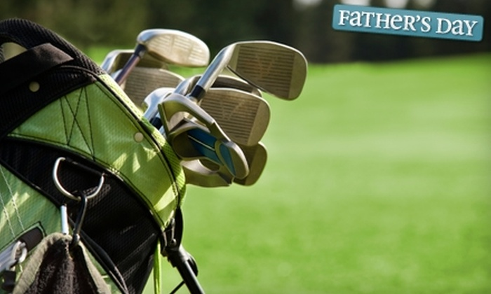 Steve Newman Golf - Hendersonville: $39 for a One-Hour Lesson with High-Speed Video Analysis at Steve Newman Golf ($80 Value)